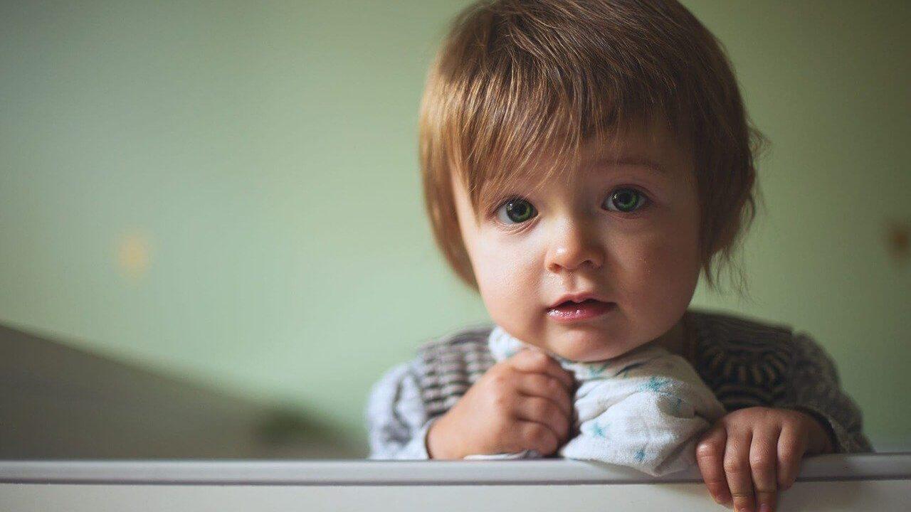 医療的ケア児の保活